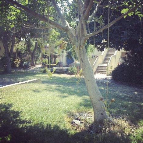 Kibbutz Garden